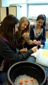 Gr. 9's study their own DNA at Michael Smith Laboratories, UBC.